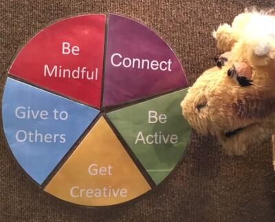 Wellbeing wheel Harold