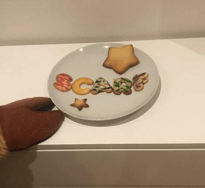 SCARF biscuits
