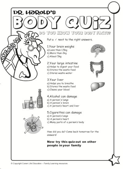 Body quiz activity sheet