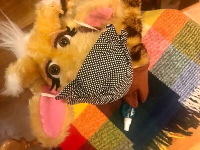 Harold wearing a facemask