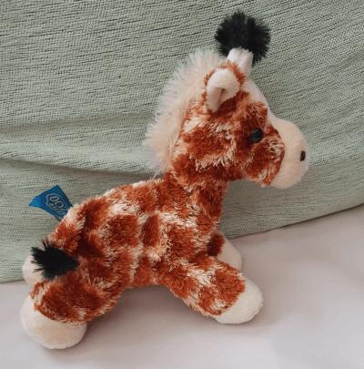 A tiny giraffe