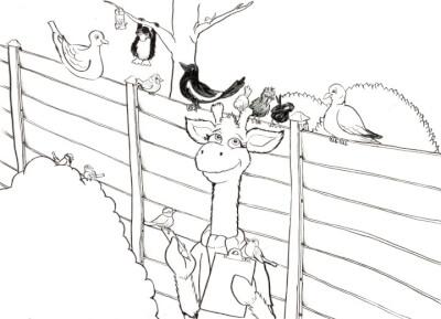 Drawing of Harold in garden, with bird watching equipment