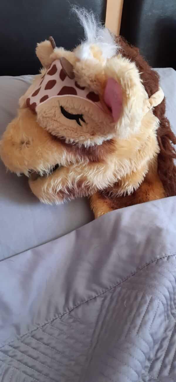 Harold sleep mask